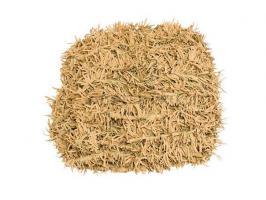 Сеть маскировочная Папоротник (светлобежевый) трава (1,5*2 м) (на сетевой основе)